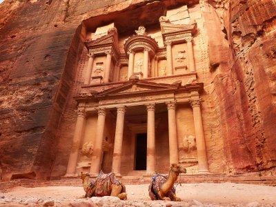 Petra, kamelen